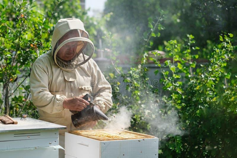 Apicultor en el colmenar El apicultor est? trabajando con las abejas y las colmenas en el colmenar fotos de archivo