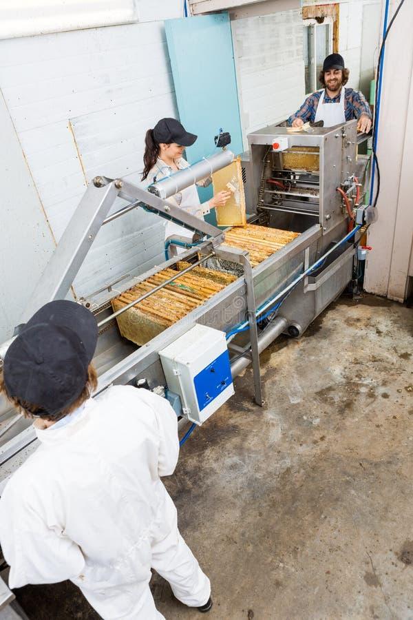 Apicultores que trabajan en Honey Extraction Plant foto de archivo libre de regalías