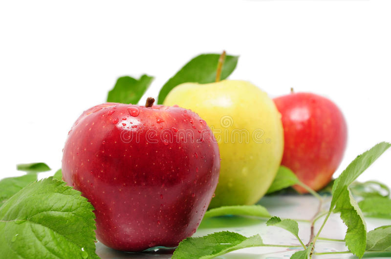 Aple. Juicy red and yellow apples with leaves royalty free stock photos