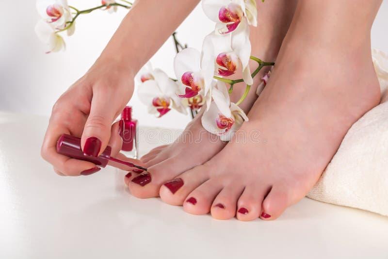 Aplicação da jovem mulher escura - polimento de pregos vermelho em seus pés com a escova imagens de stock