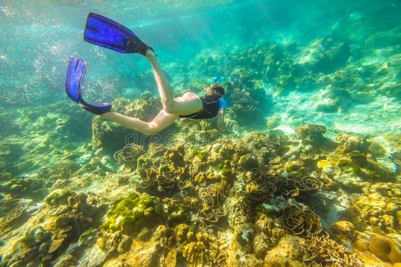 Apnea w tropikalnym morzu obrazy royalty free