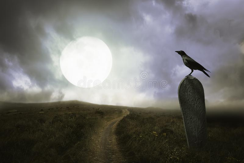 Halloween background with raven and grave stock images