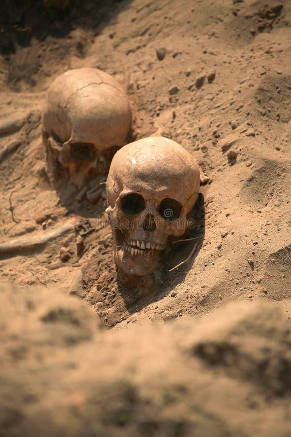 Apokalipsy pojęcia czaszka i kości abstrarct tło fotografia stock
