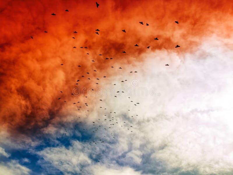 apokalyptisk sky arkivfoton