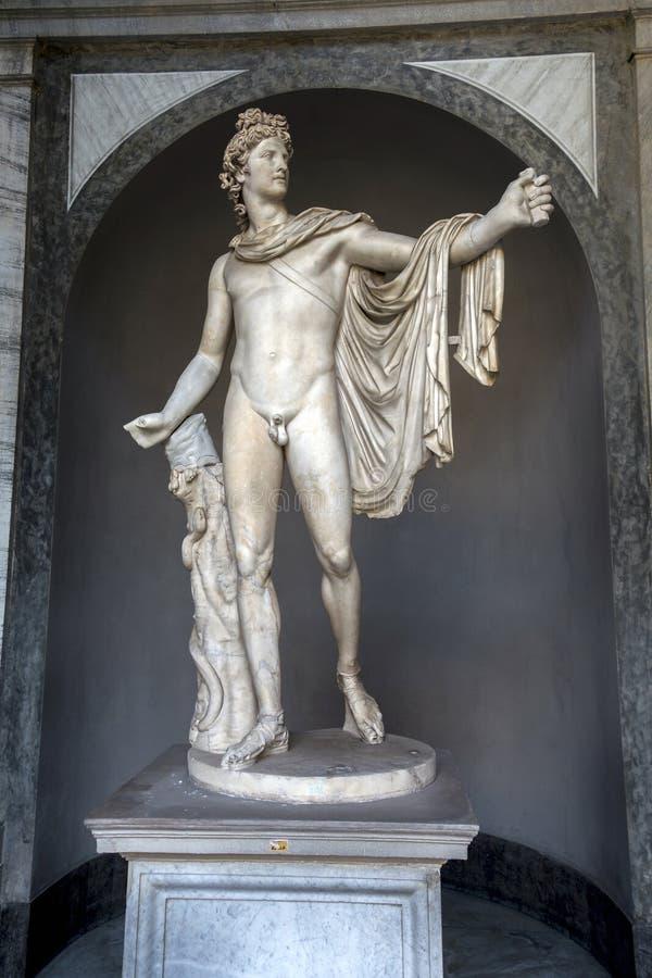 Apollo del Belvedere en los museos del Vaticano fotos de archivo libres de regalías