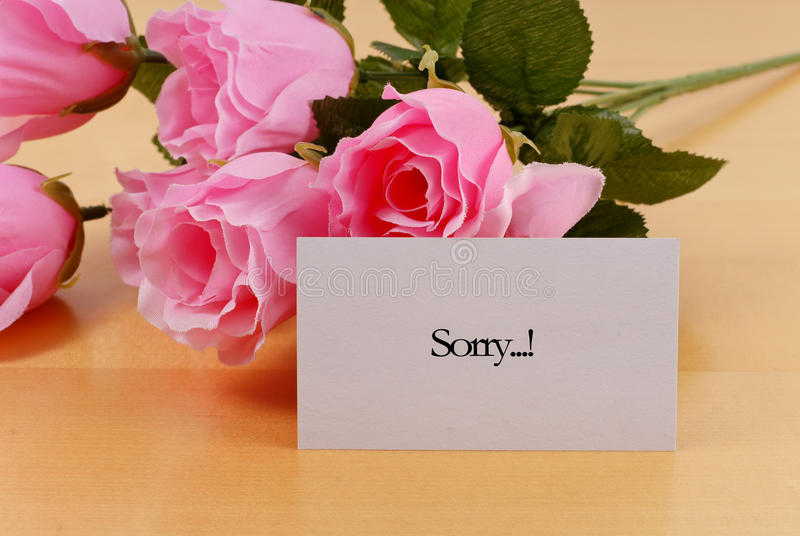 Apology Concept. With Fake Roses royalty free stock image