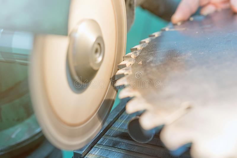 Apontando a circular viu, trabalhador aponta uma lâmina de serra circular imagem de stock royalty free