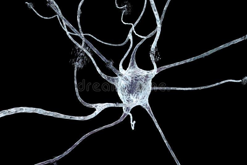 Apoptosis van neuron die in verschillende ziekten wordt waargenomen royalty-vrije illustratie