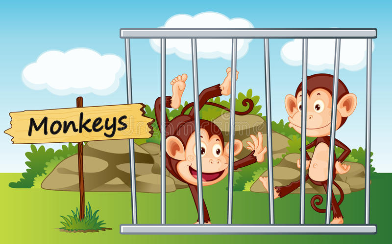 Apor i bur stock illustrationer