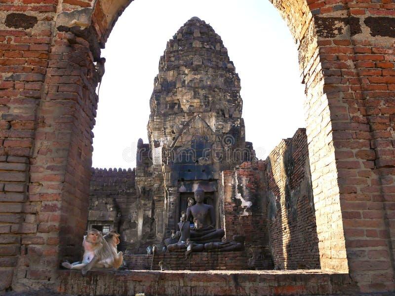 Apor i Wat Phra Prang Sam Yot i Lopburi, Thailand arkivbilder