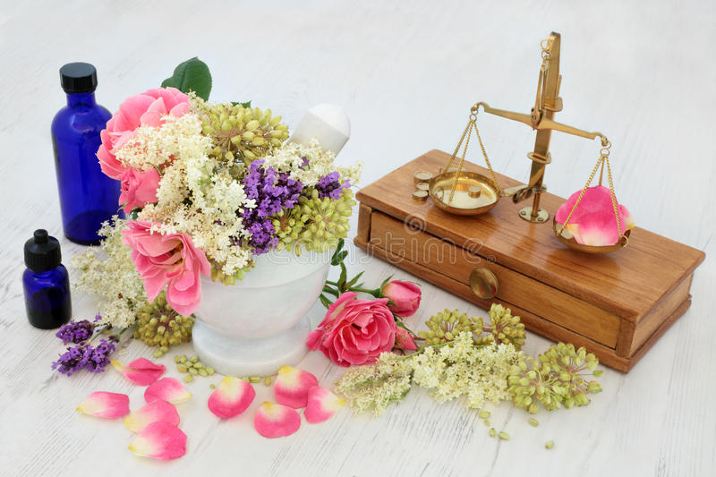 Apothecary Flowers and Herbs. Elderflower, rose and lavender herb flowers with angelica seed heads used in natural alternative medicine with brass scales stock photo