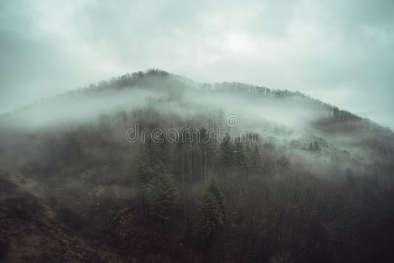 Fog on mountain stock images