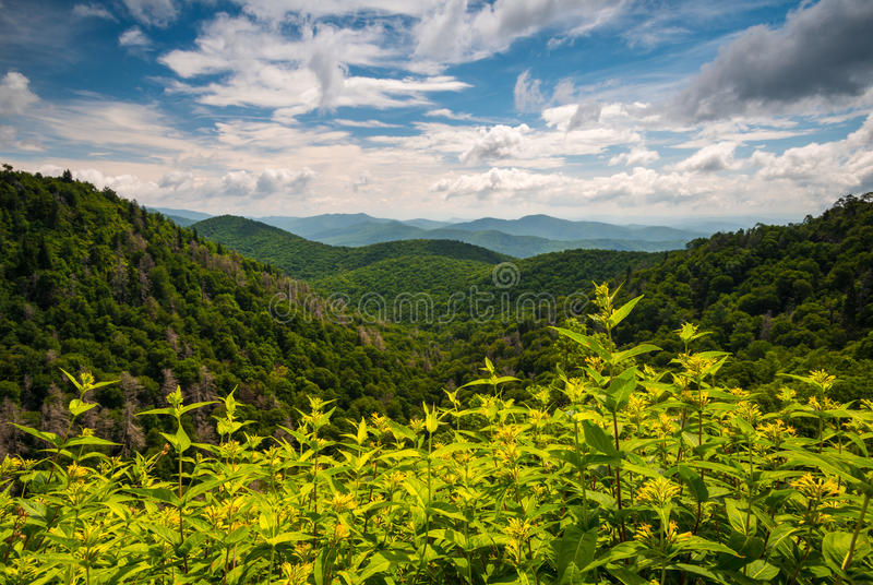 21,542 Appalachian Mountains Photos - Free & Royalty-Free Stock Photos from  Dreamstime