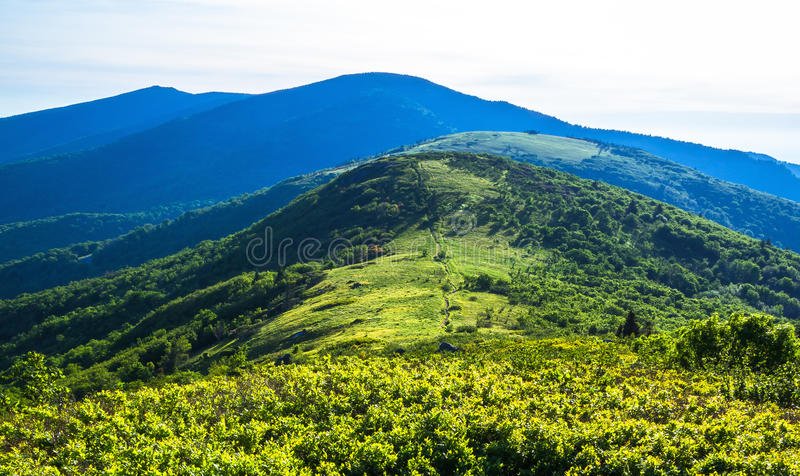 Appalachian Trail. Afternoon hike along the Appalachian Trail at Roan Mountain with Jane bald and Round bald in the distance. Taken from Grassy Ridge on the stock photos