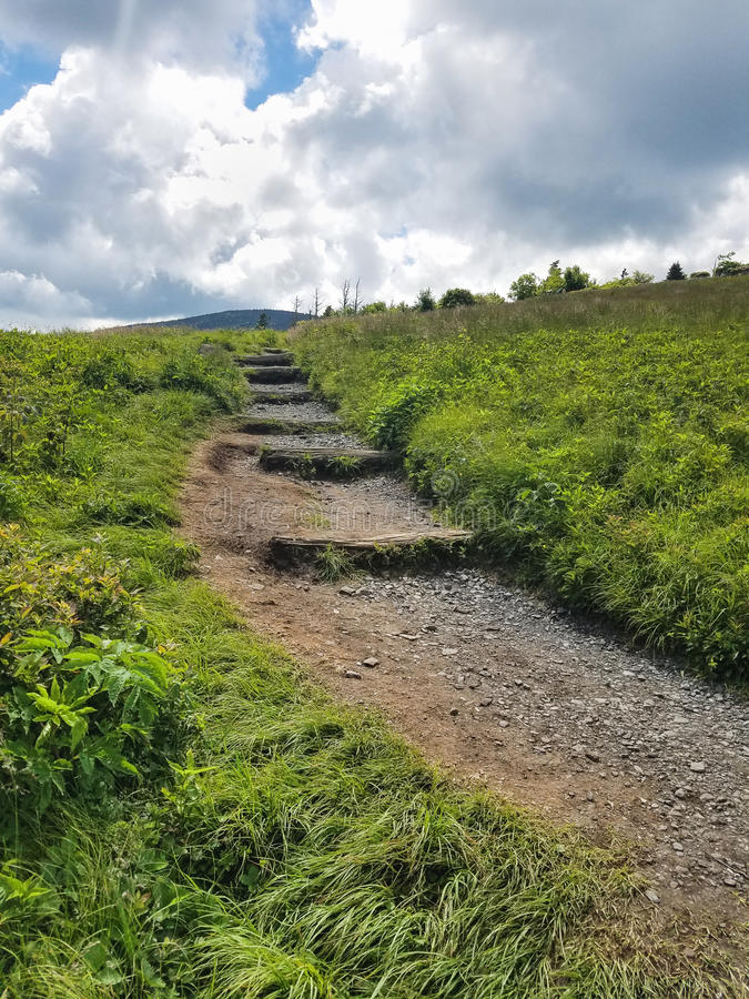 Appalachian Trail Roan Mountain TN NC. Vertical of the Appalachian Trail as it winds up and over Round Bald in the Roan Mountain Highlands on the border of North stock image