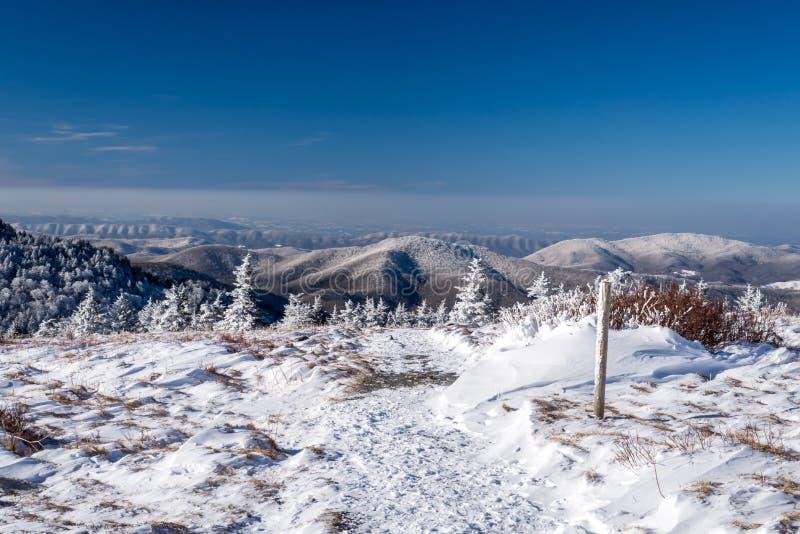Appalachische Hinterwinter-Wanderung stockfotos