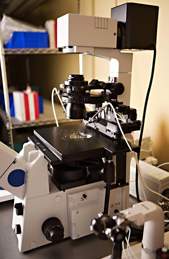 Apparatuur de in vitro van het Laboratorium stock foto