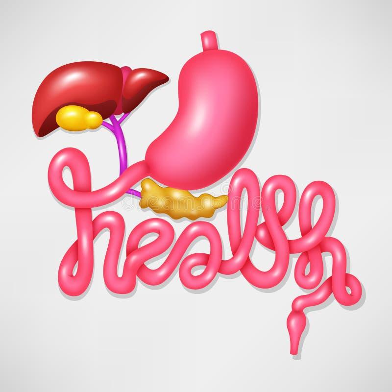 Appareil digestif humain de symbole de campagne de santé illustration stock