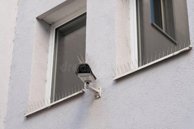 Appareil-photo d'observation avec la protection de pigeon avec les transitoires en acier photographie stock libre de droits