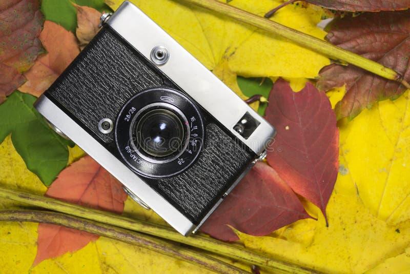 Appareil-photo sur des lames d'automne photos stock