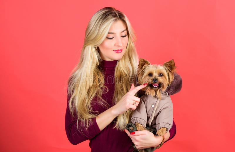 Apparel and accessories. Dressing dog for cold weather. Which dog breeds should wear coats. Girl hug little dog in coat. Woman carry yorkshire terrier. Make stock photo