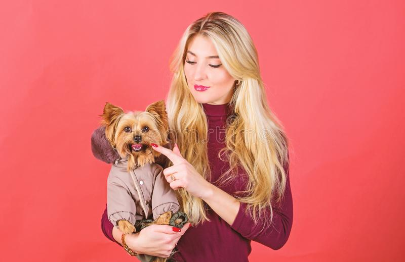 Apparel and accessories. Dressing dog for cold weather. Which dog breeds should wear coats. Girl hug little dog in coat. Woman carry yorkshire terrier. Make stock images