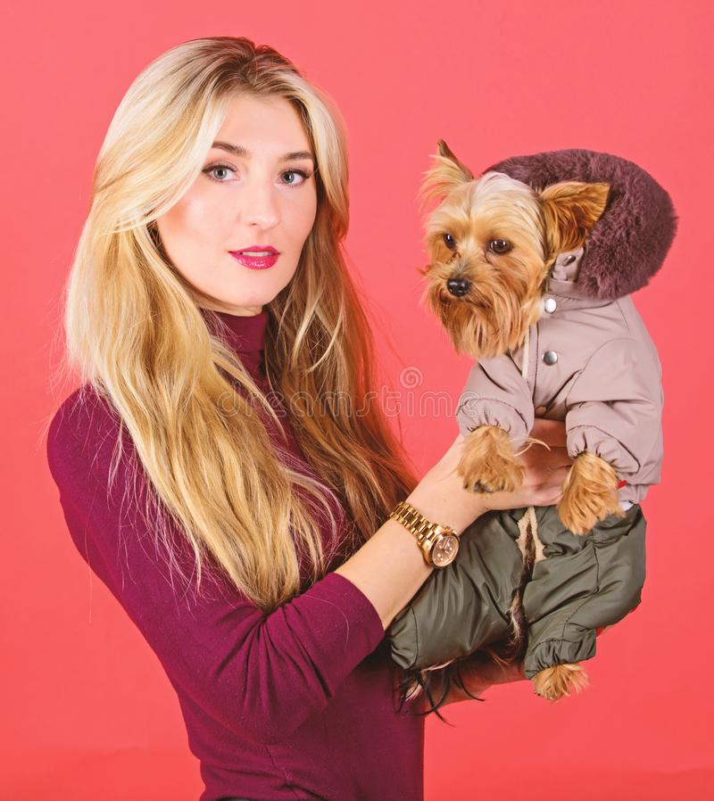 Apparel and accessories. Which dog breeds should wear coats. Girl hug little dog in coat. Woman carry yorkshire terrier. Dressing dog for cold weather. Make royalty free stock photos