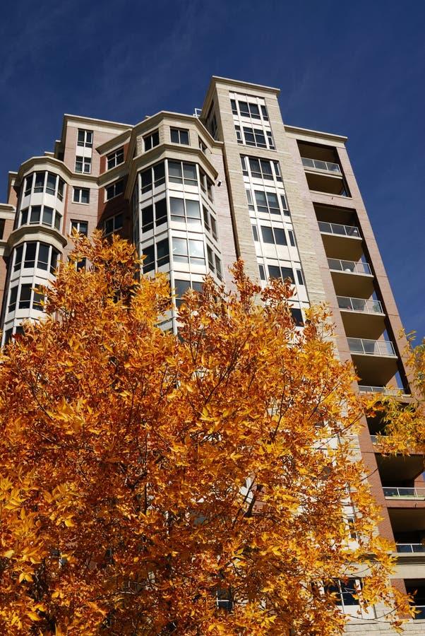 Appartement élevé avec des lames d'automne photographie stock