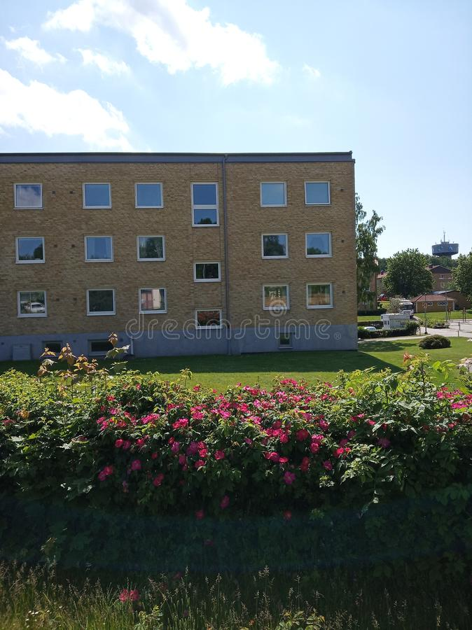 Appartement in little town. Flower, sky stock image