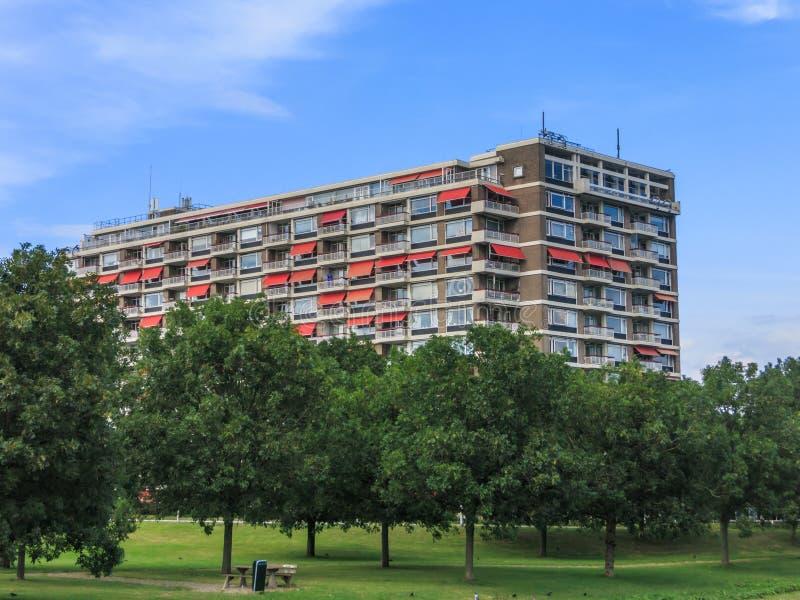 Appartements avec la vue sur le parc photos libres de droits