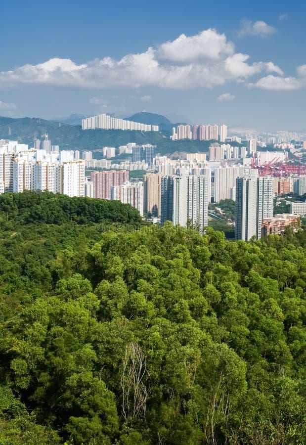 Appartements grands avec la montagne verte et le ciel bleu image stock