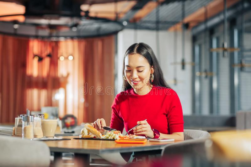 Appealing woman with long dark hair eating lunch in restaurant stock image