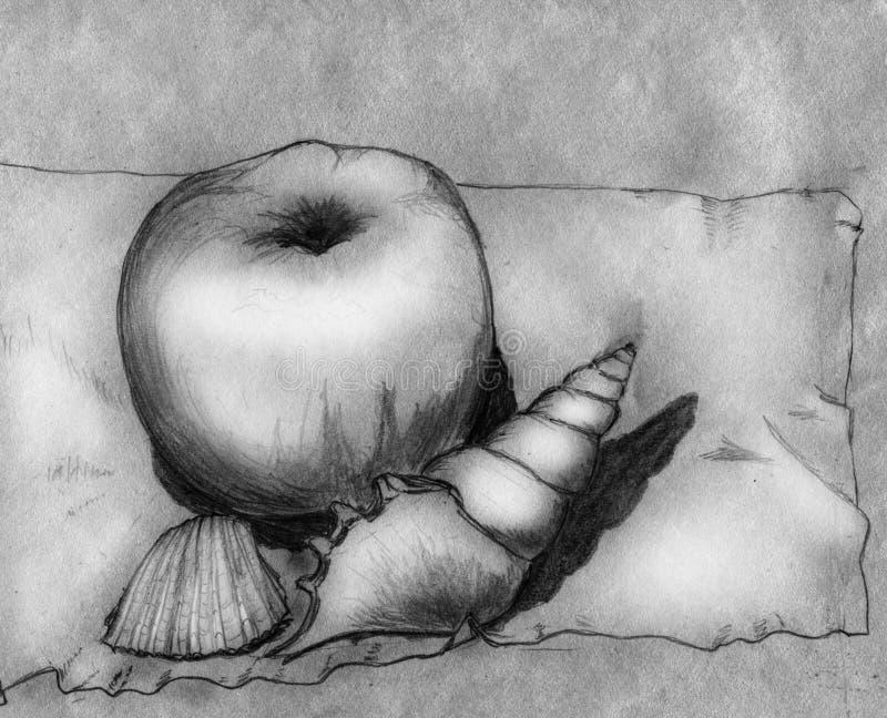 Appel en twee shells - stilleven stock illustratie