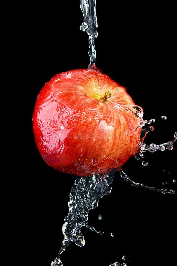 Appel in water stock afbeelding