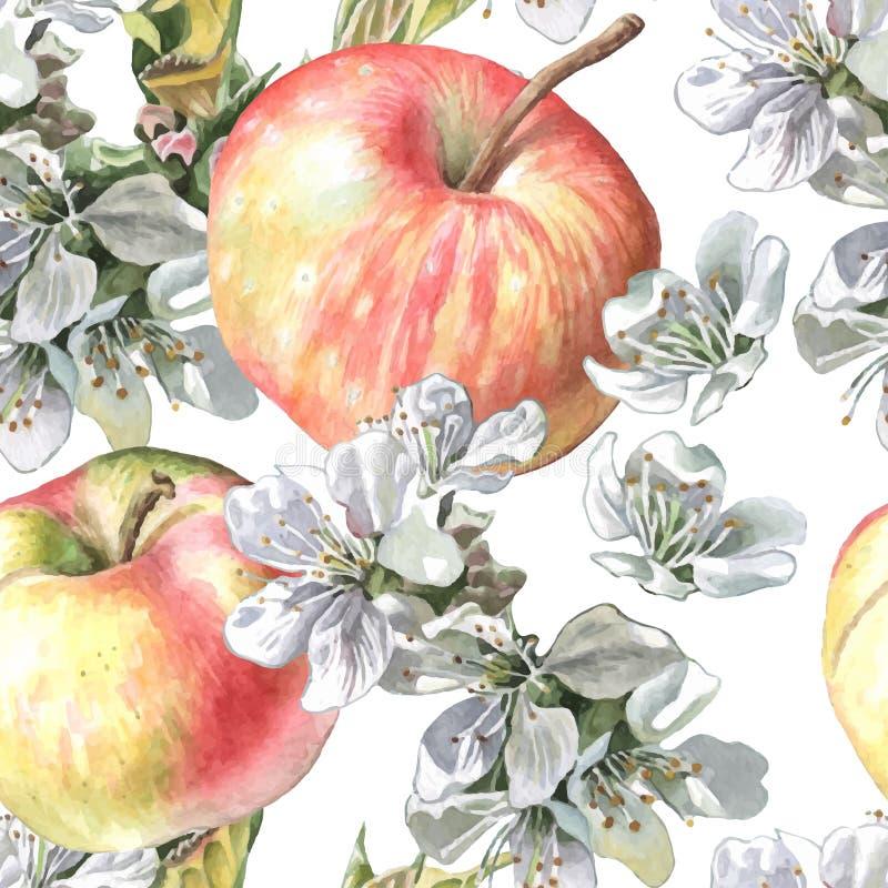 Appelen en bloemen royalty-vrije illustratie