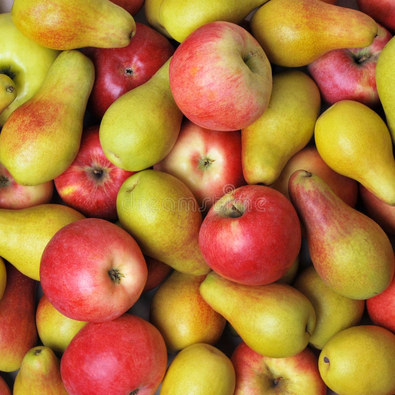 Appelen en peren royalty-vrije stock afbeeldingen
