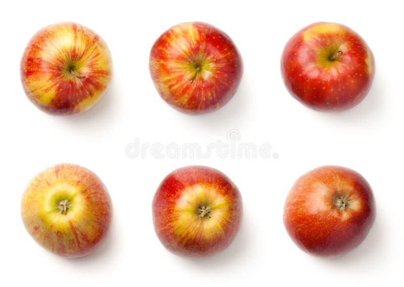 Appelen op witte achtergrond worden geïsoleerd die stock fotografie
