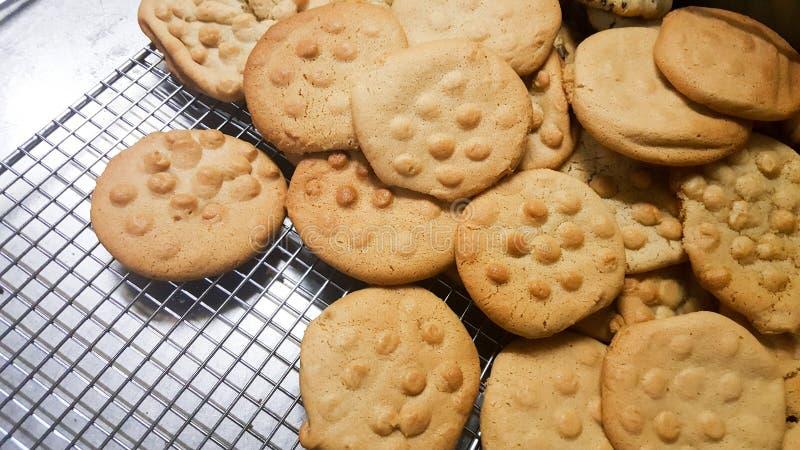 Appena biscotti al forno del malto pronti da mangiare fotografia stock libera da diritti