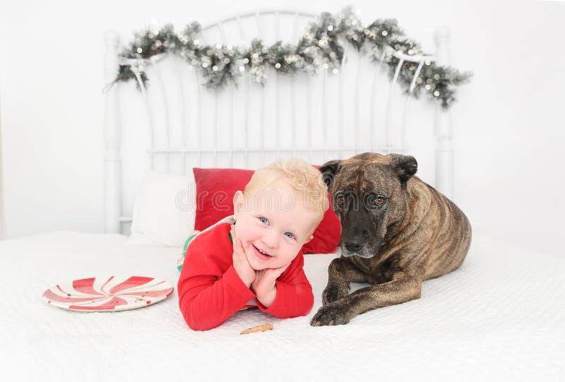 Appena un ragazzo ed il suo cane