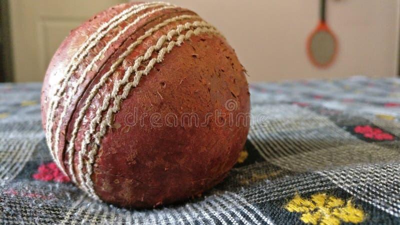 Appena una palla da cricket fotografie stock libere da diritti