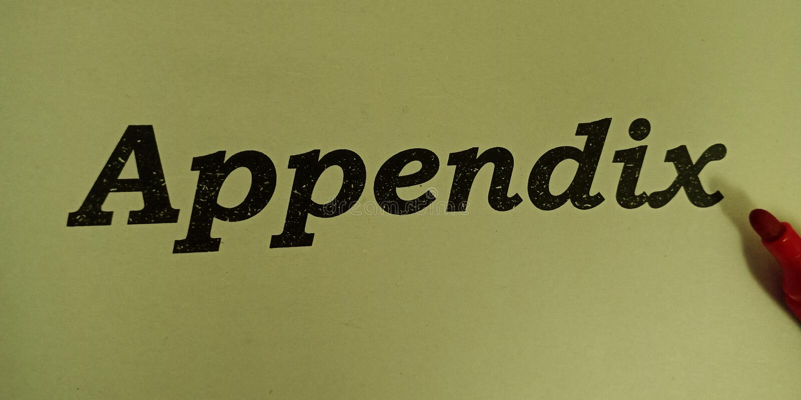 Appendix words in black english letters written on paper stock image