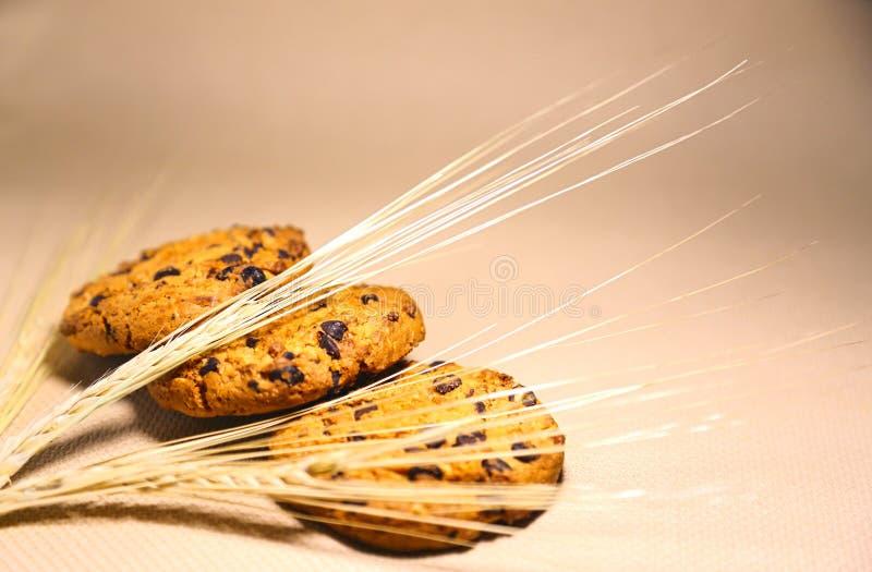 Appetitanregende Plätzchen mit Klumpen der Schokolade und der Ohren des Weizenkornes lizenzfreies stockbild