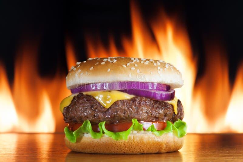 Cheeseburger lizenzfreies stockfoto