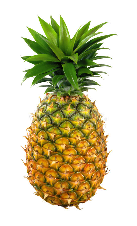 Download Appetite pineapple stock photo. Image of nutrition, pineapple - 22682126