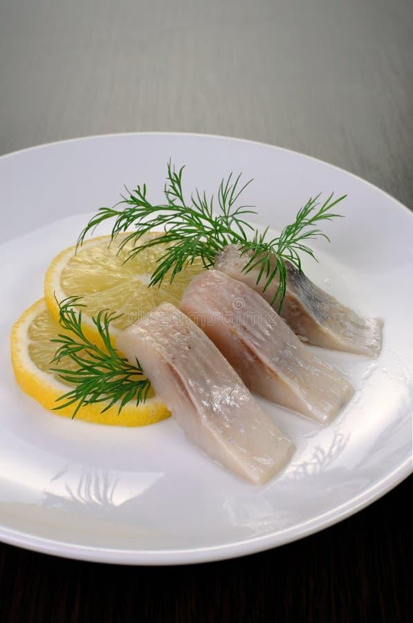 Appetizer of herring stock image