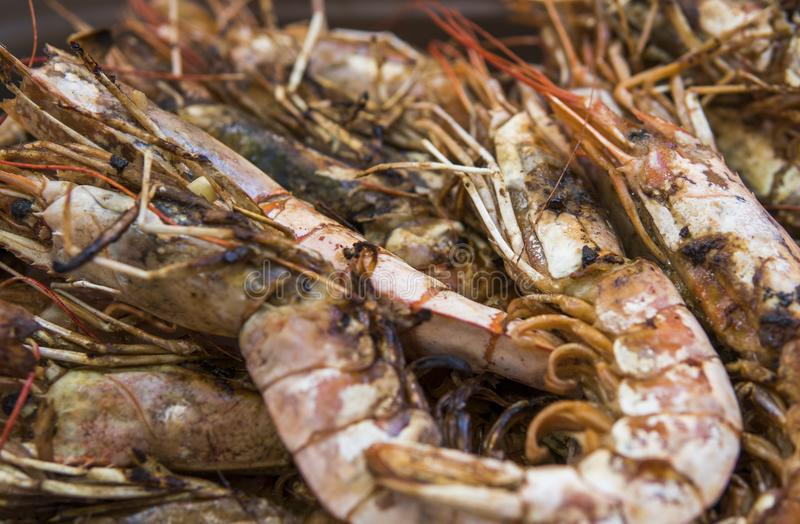 Appetizing grilled royal shrimp. Seafood grill on the stove, on the street food market. stock photos