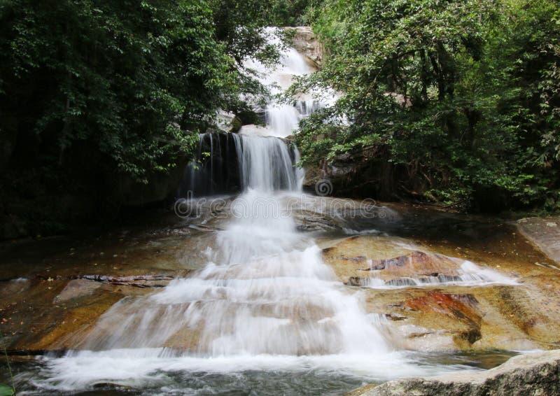 Applådera vattenfallet i en tropisk djungel arkivbild