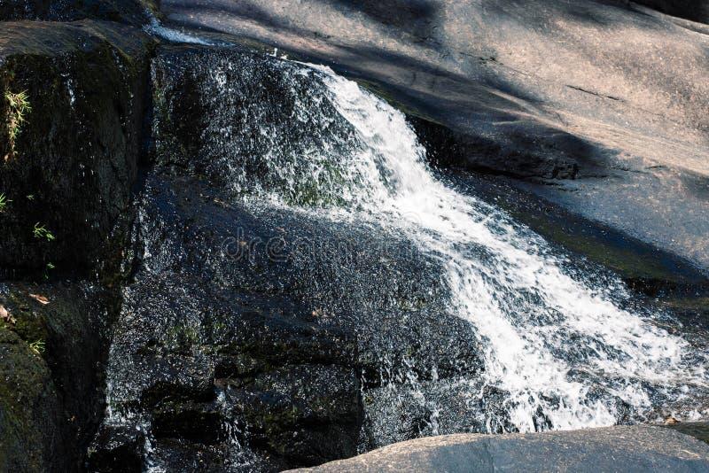 Applådera vattenfallet på floden i Rocky Mountains, Asien royaltyfri fotografi