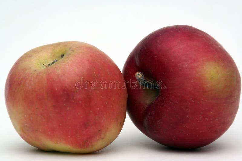 Apple果子部分 库存图片