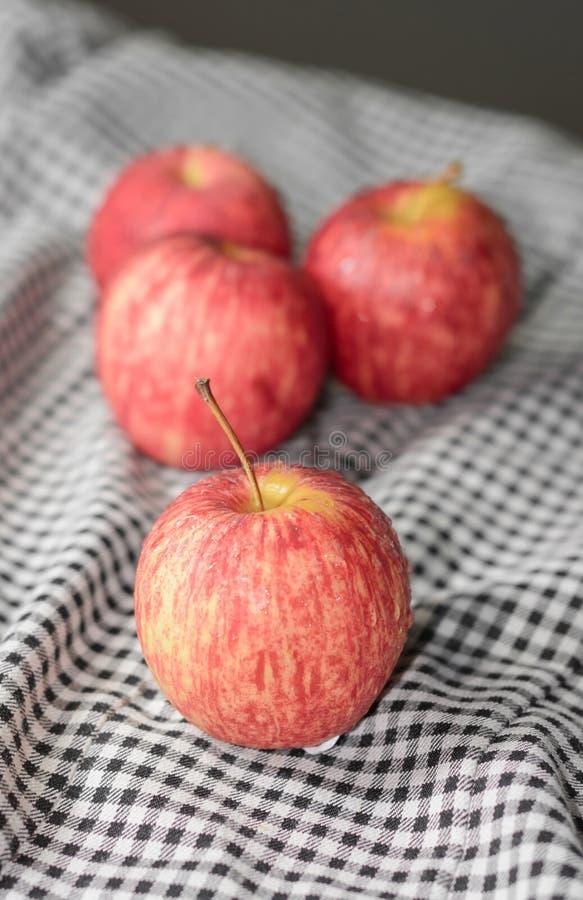 Apple果子 免版税库存图片